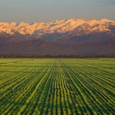 Municipal Energy and Water Solutions for the San Joaquin Valley